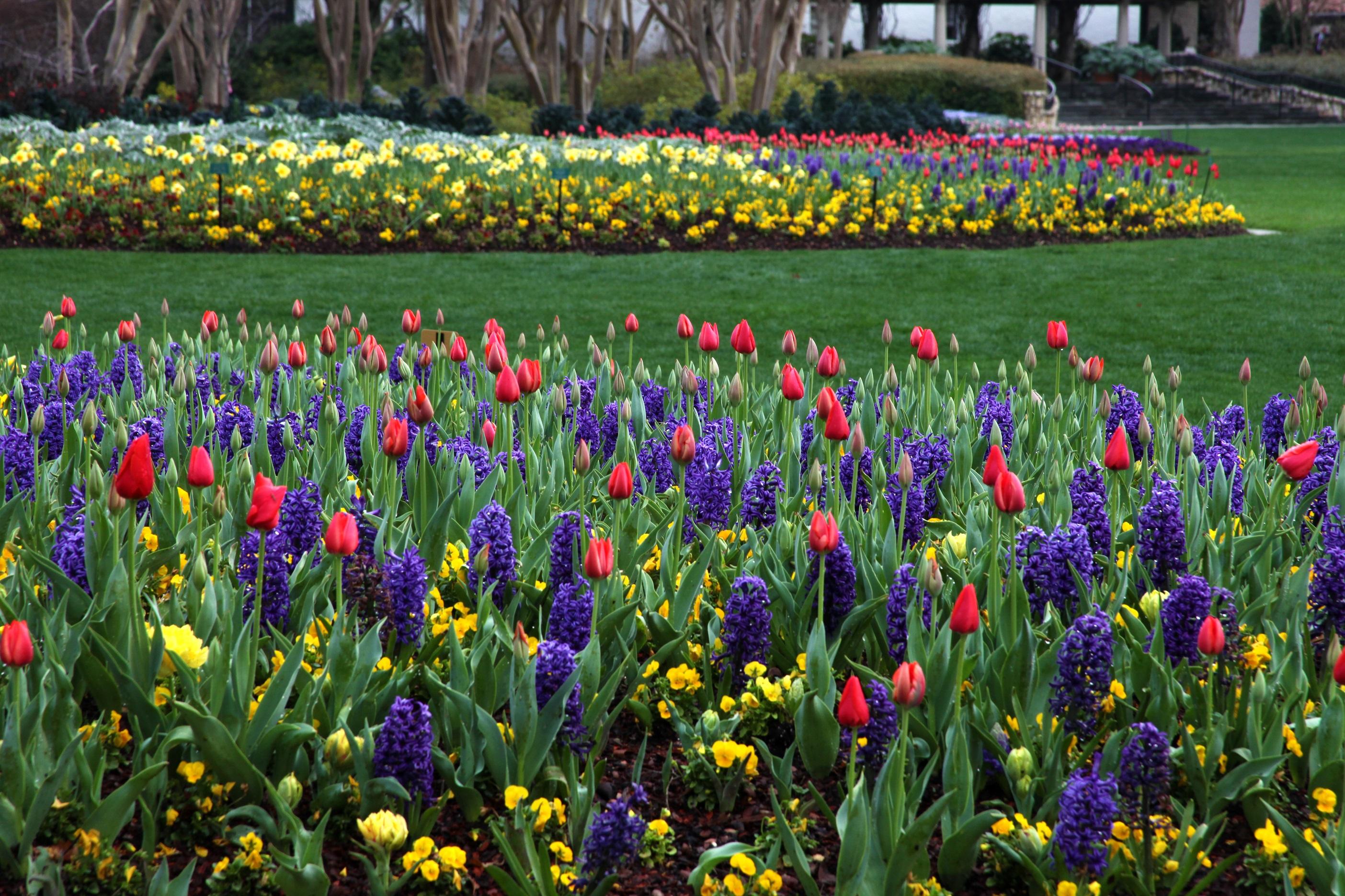 Botanical Gardens Membership Garden Club Membership Pittsburgh Botanic Garden Missouri